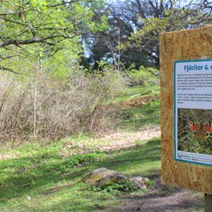 POP-UP aktivitet - Pollinerare i Yttereneby naturreservat