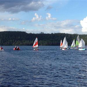 Torkel Berg,  © Torkel Berg, flera segelbåtar ute på sjön.