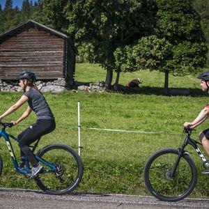 Cyklister som cyklar.