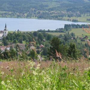 Utsikt från Björkberget över kyrkan och Alviken.