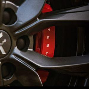 The Swedish Tesla Meet