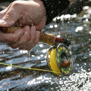 Flugfiske vid vatten.