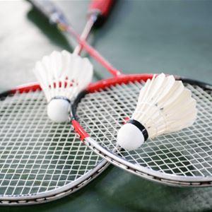 Anpassad aktivitet - Badminton