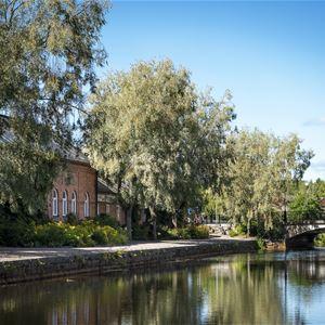 Faluån med spegelblankt vatten, grönskande träd och bro i bakgrunden.