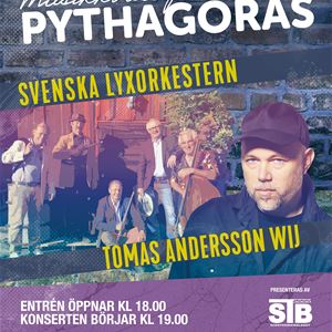Tomas Andersson Wij & Svenska Lyxorkestern
