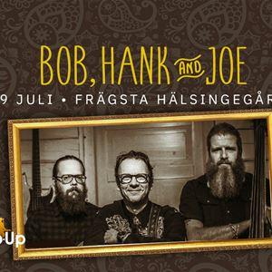 Bob, Hank & Joe på Frägsta Hälsingegård