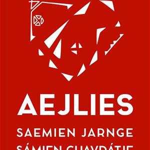 Vernissage och Invigning Aejlies i Tärnaby
