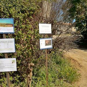 Parcours gourmand et oenotouristique du Domaine de Mirabeau
