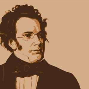 Schubertoktett med Camerata Nordica