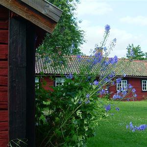 Hembygdsgårdarnas dag i Koversta