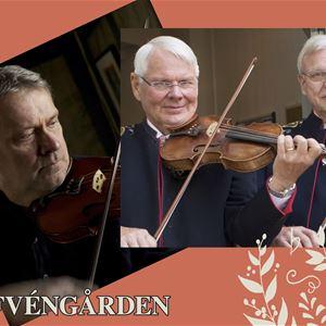 © från musikerna, Tre spelmän med sina fioler.
