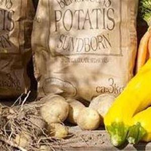 En påse med potatis, morötter, gul squash samt några potatisar.