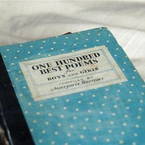 En bok med ett blått omslag med vita prickar på.