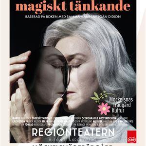 Teater - Ett år av magiskt tänkande