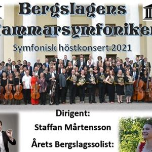 En affisch med bergslagens kammarsymfoniker.