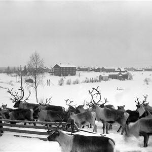 Samiska kulturmiljöer i Gävleborg