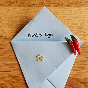 Vik frökuvert och papperskruka i origami samt byt frön