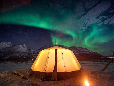 24-timers Tromsø: Reinsdyrleir over natten med snøscootereventyr