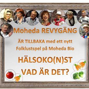 REVY: HÄLSOKO(N)ST  VAD ÄR DET?