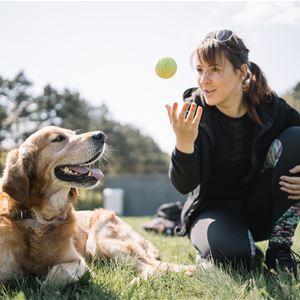 Invigning av hundparken i Tingsryd