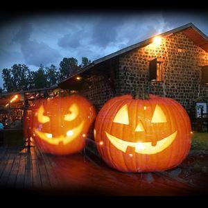 Halloweenhelg på Axmar Brygga