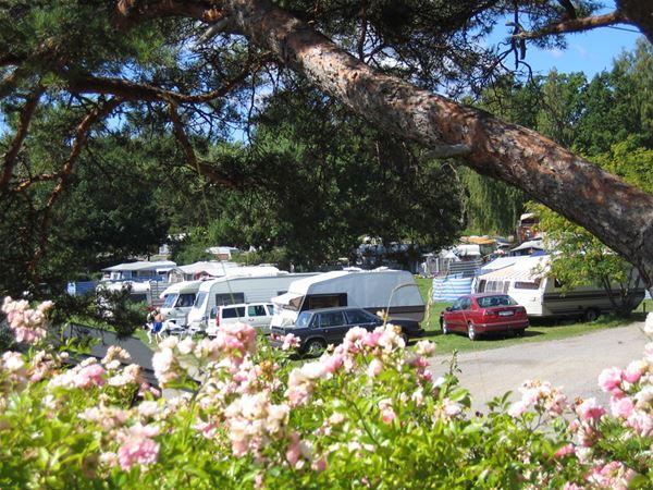 KustCamp Ekön / Camping