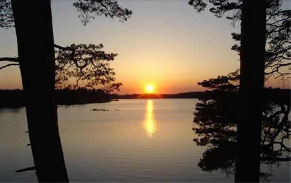 Getnö Gård - Lake Åsnen Resort/Camping