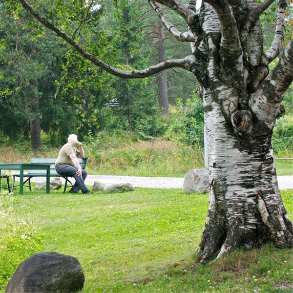 Gaffelbyn Hostel - Sundsvall