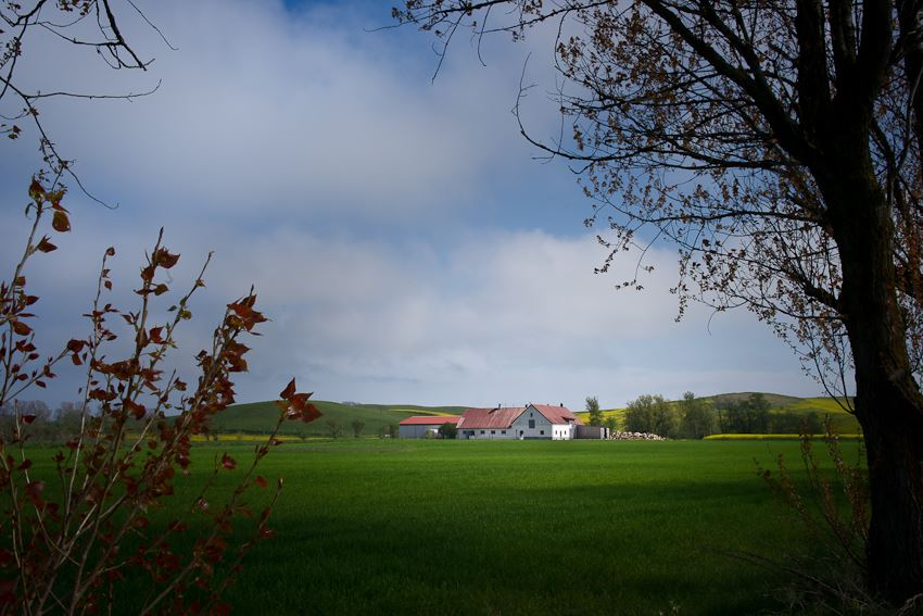 Foto: Øyvind Sviland, B&B Vinkille