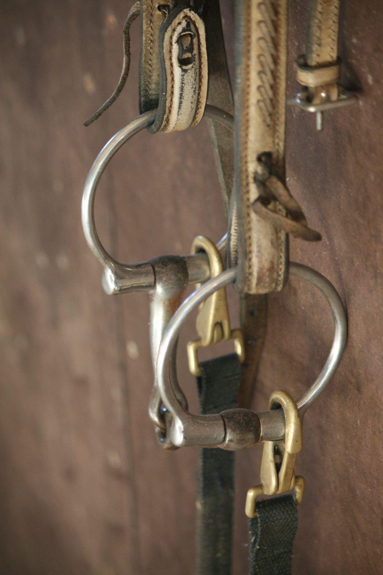 Foto: Pia R Wallner, Horse and Wagon