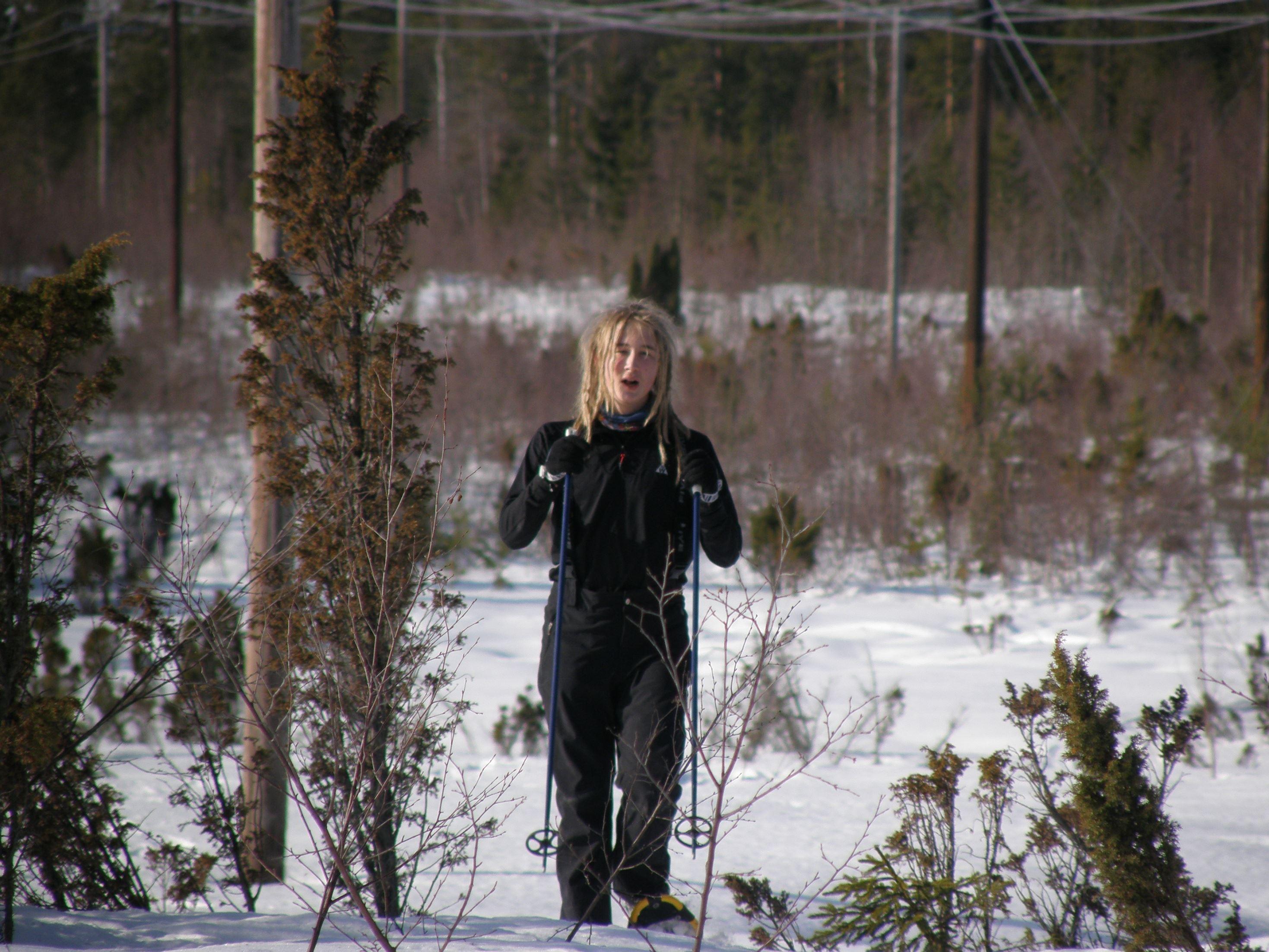 Snöskovandring med guide