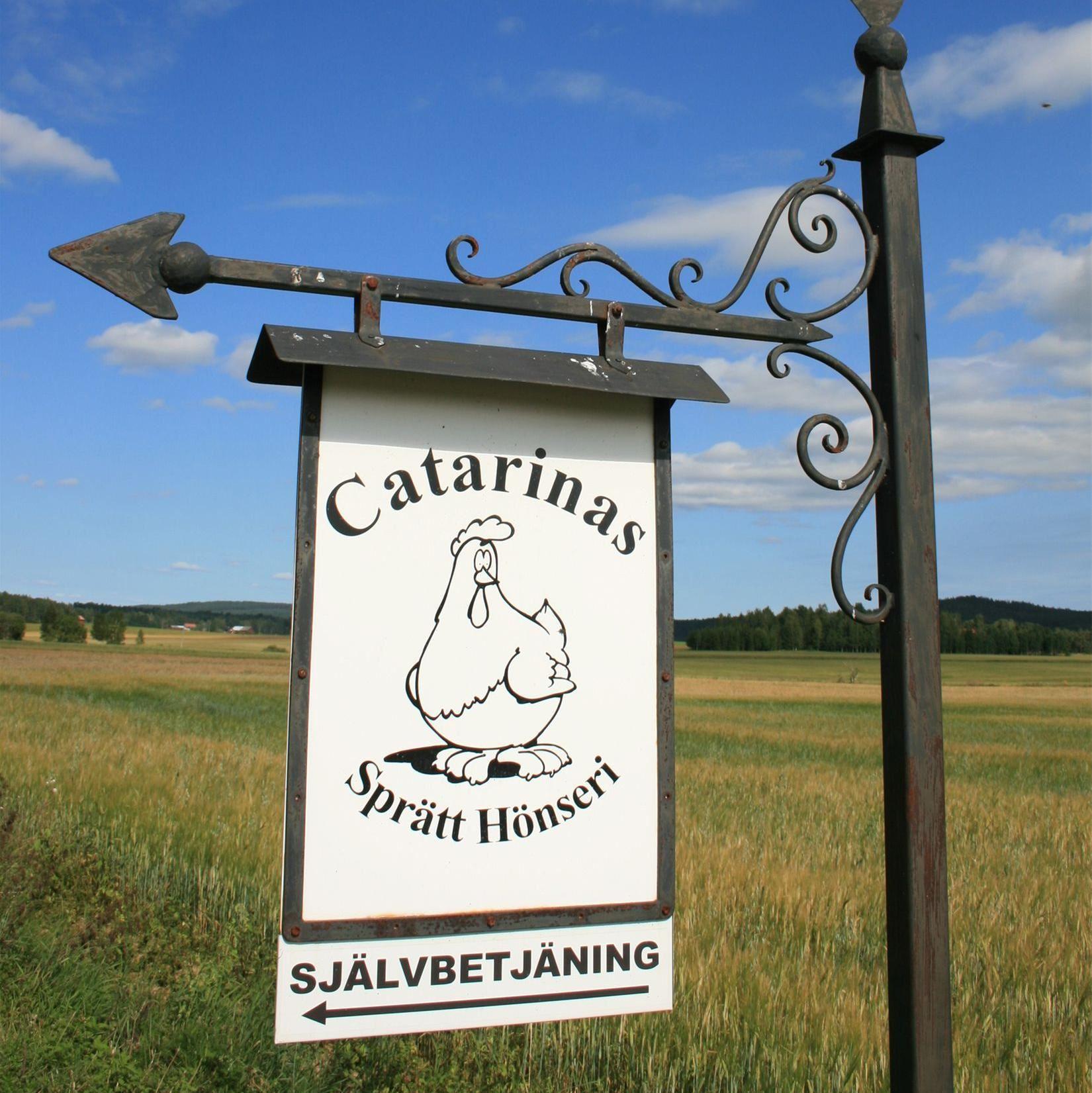 Catarinas fop hen farm