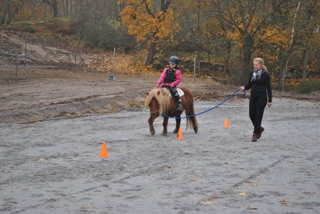 Riding - Dunebogård