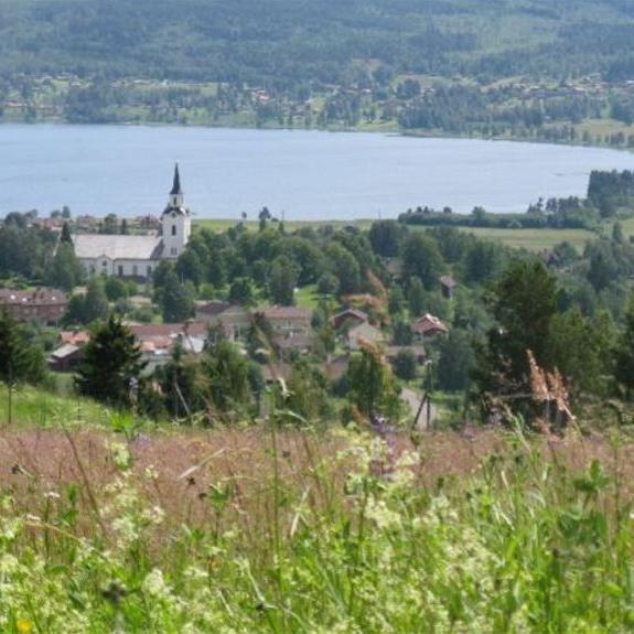 Naturstig: naturum Dalarna - vandringsled
