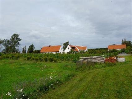 Domaine Sånana, Skillinges vingård