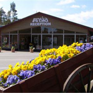 Ansia Resort/Stugor