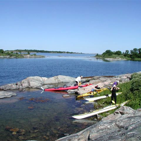 Rental of a double sea kayak