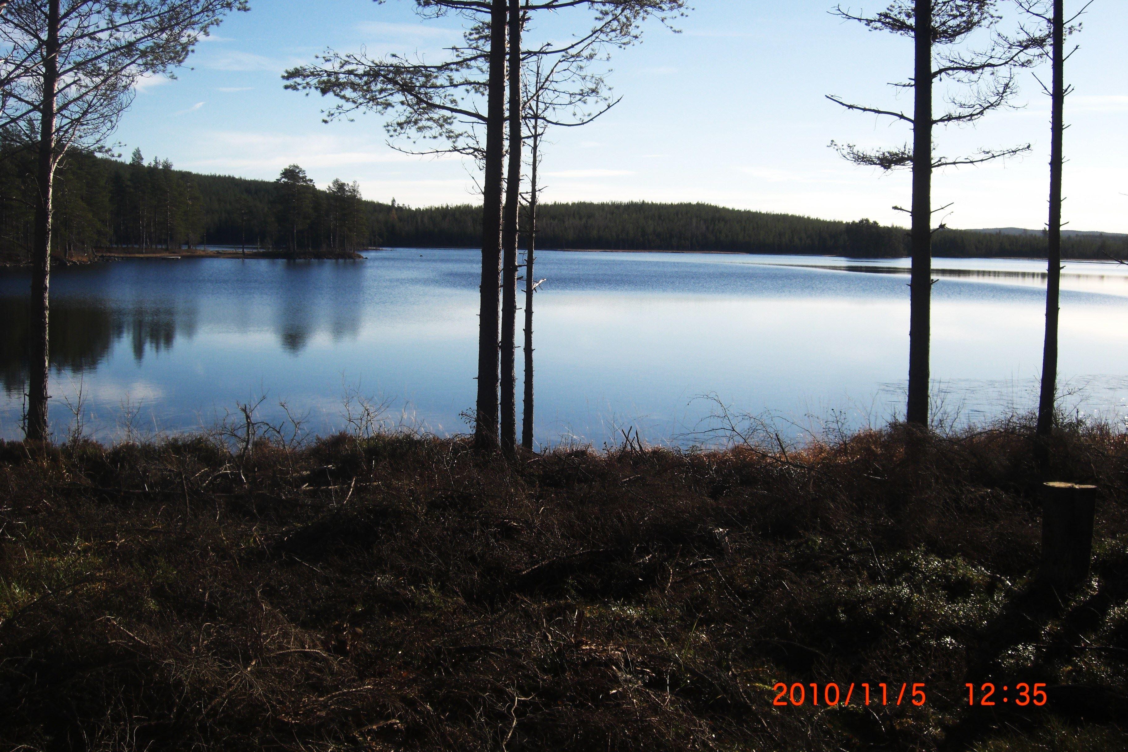 Sjönära stuga vid sjön Flaten, 10-12 bäddar, 19 m2