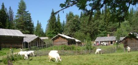 Skräddar-Djurberga Fäbod - Summer Farm