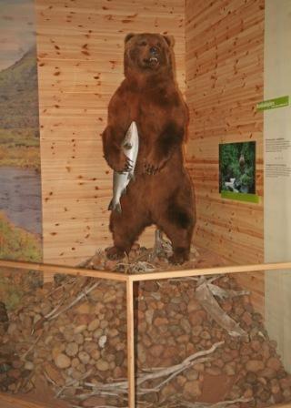 Predator Centre - Wood Design Forum