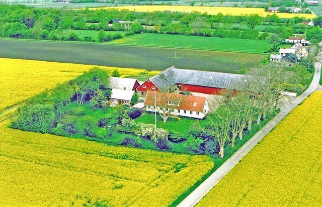 Lyckås Farm - near Helsingborg and Denmark (copy)