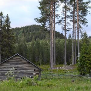 Hiking weekend - Fryksås fäbod Orsa. August 30 - September 1