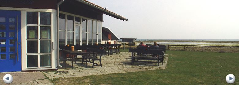 Restaurant Fågel Blå