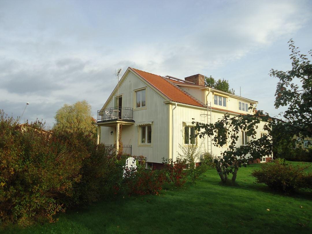 Trädgården är rikt av vegetation, bärbuskar, äppelträden, hallon och jordgubbsland