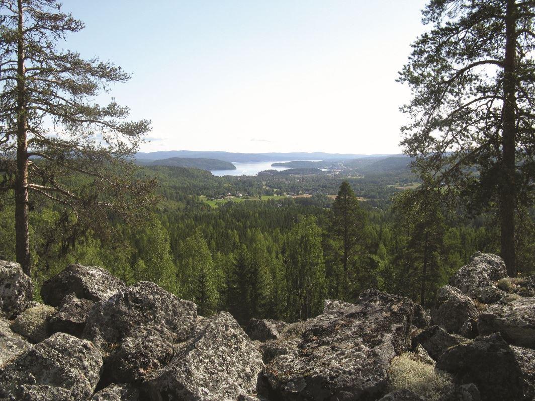© Kramfors kommun, Vy från Borgberget