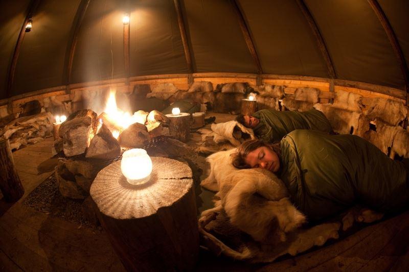 Nordlyscamp & Hundekjøring - Tromsø Villmarkssenter