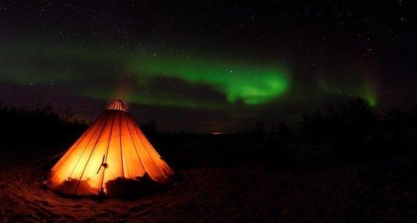 Overnatting i lavvo med nordlys og reinsledekjøring - Tromsø Lapland