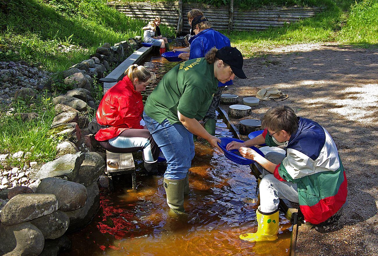 © Guldvaskningen i Ädelfors, Guldvaskningen i Ädelfors