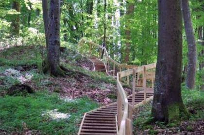 Vandra i Pershögsskogen