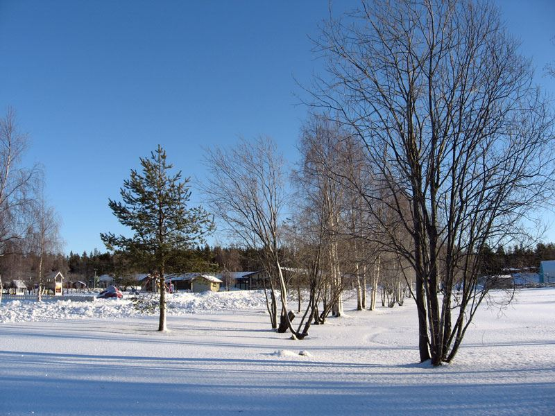 Vinter vid Nydalasjön